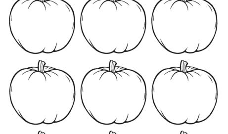 12 tiny pumpkins