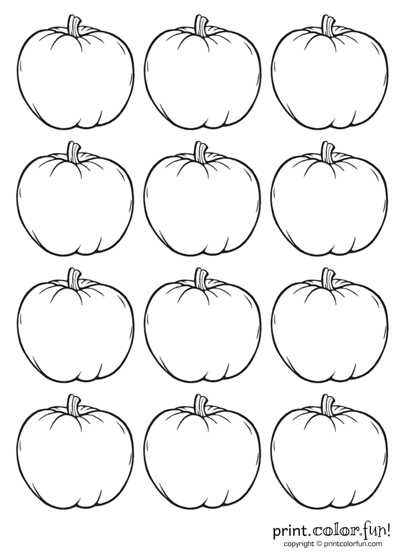 12 tiny pumpkins coloring page Print Color Fun