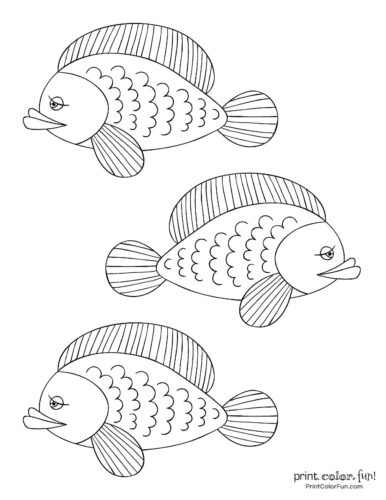 3 silly fish coloring printable from PrintColorFun com