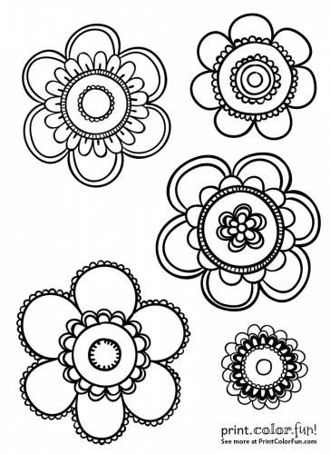 5 festive flowers