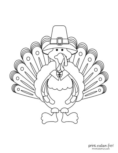 Cartoon turkey from the front