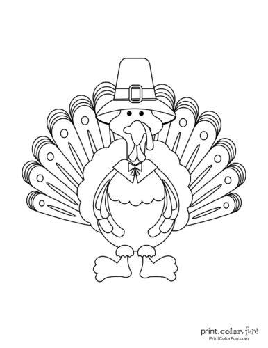 Cartoon turkey from the front