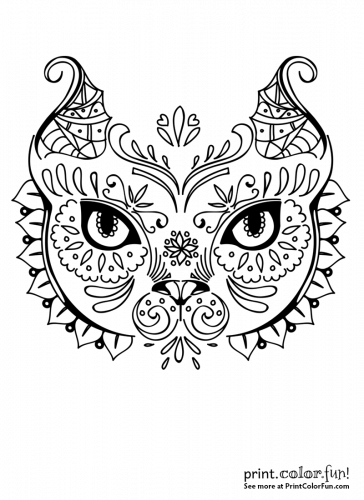 Cat face in exotic design
