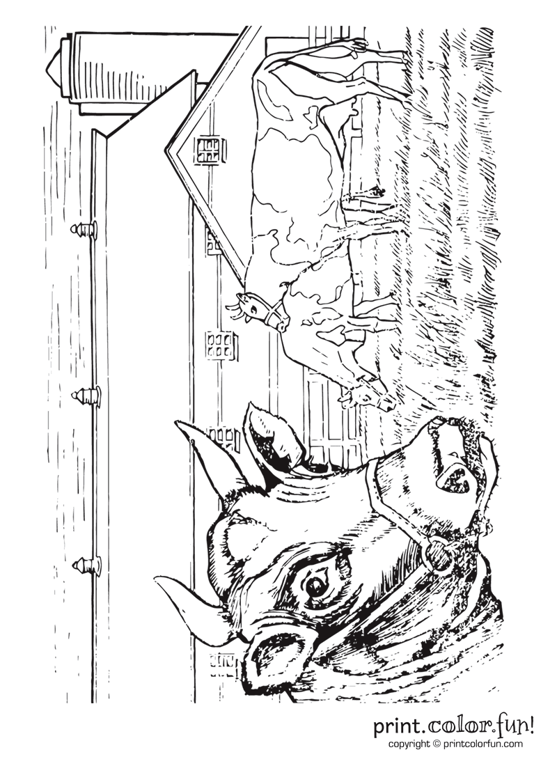 Cow On A Farm Coloring Page Print Color Fun