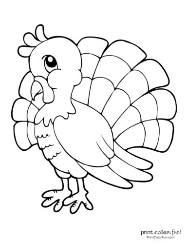 Cute Thanksgiving turkey coloring page
