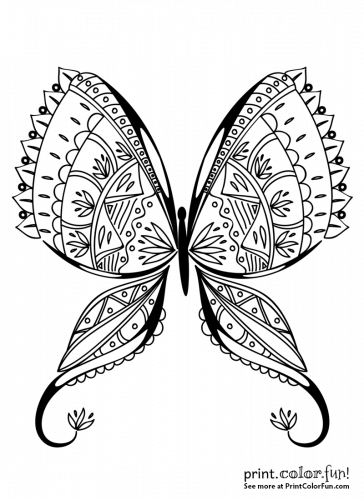 5300 Top Real Butterfly Coloring Pages , Free HD Download