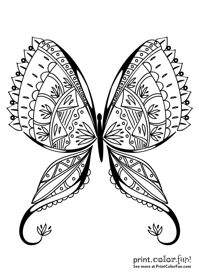 Exotic Butterfly Coloring Page Coloring Page