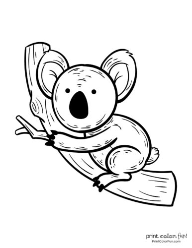 Free cute koala coloring pages (1)