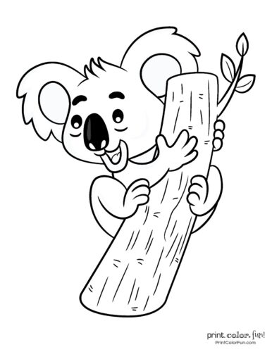 Free cute koala coloring pages (9)