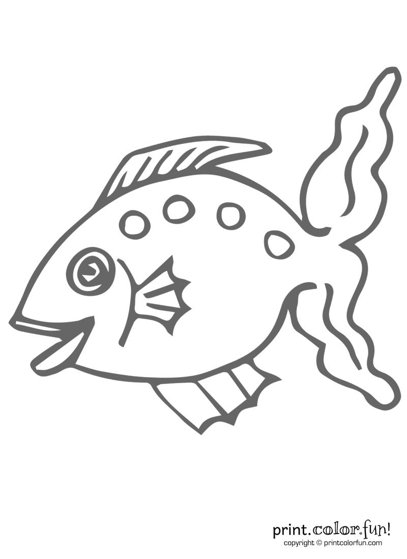 funny fish 6 coloring page print color fun