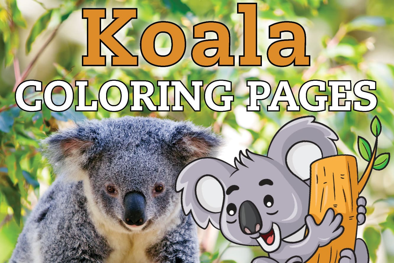 Koala Coloring Pages - GetColoringPages.com | 889x1333