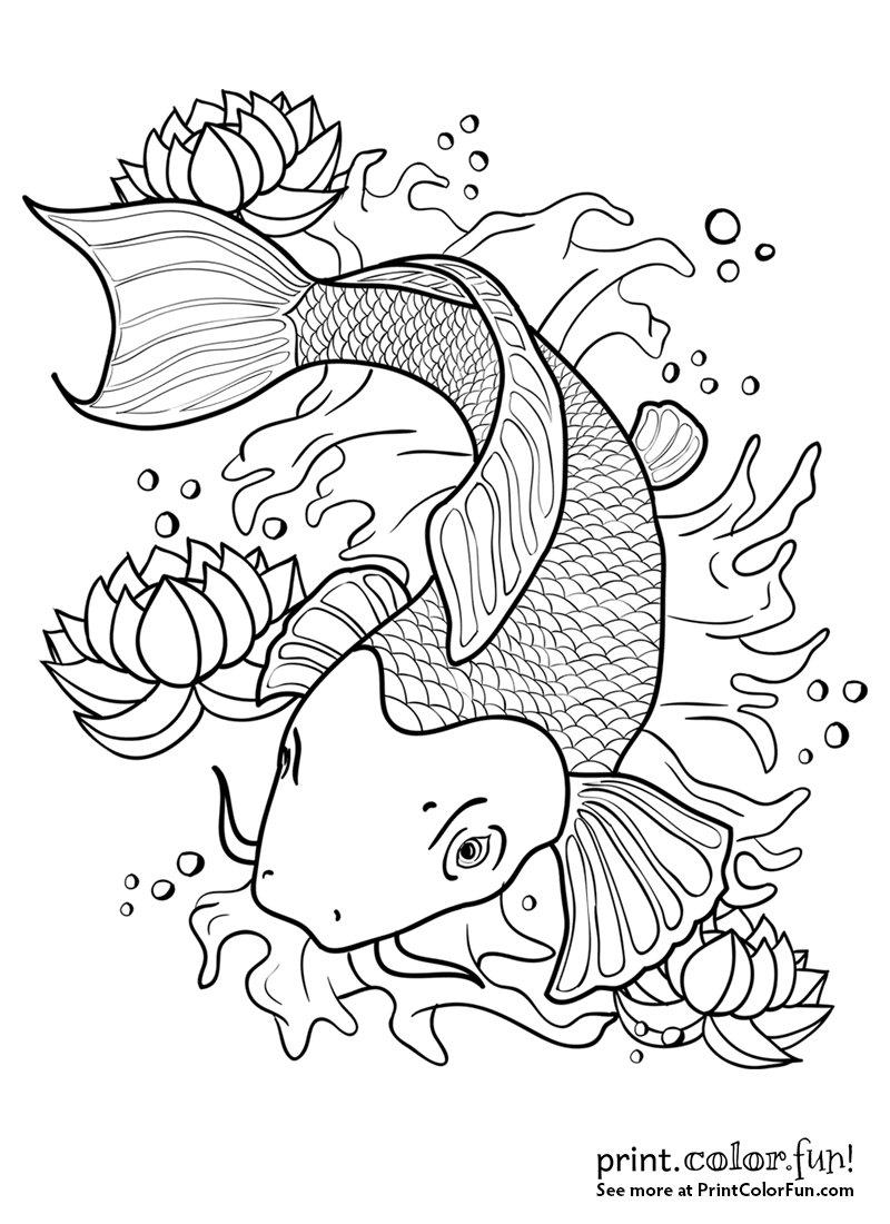 Koi fish in a pond coloring page Print Color Fun