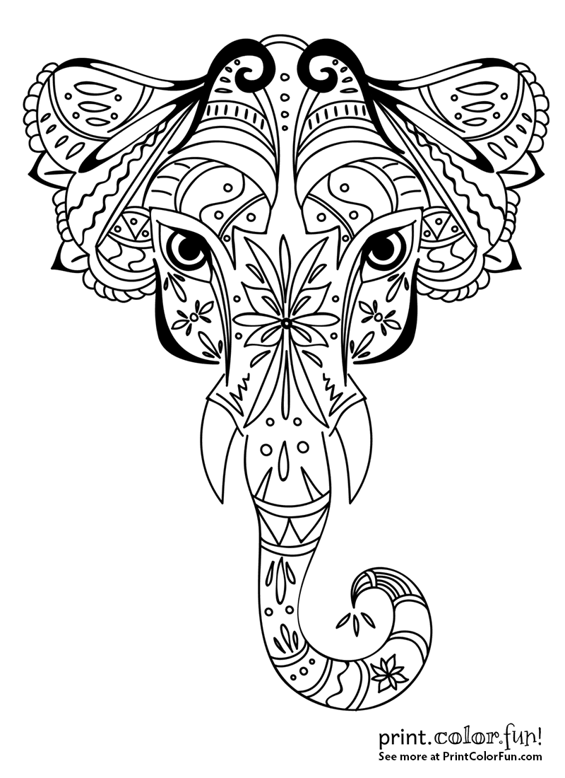 Ornamental Elephant Design Coloring Page Print Color Fun