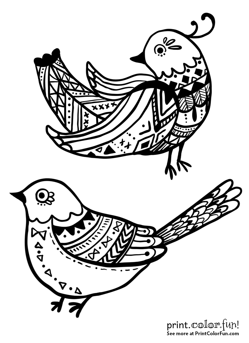 Pretty Decorative Bird Designs Coloring Page Print