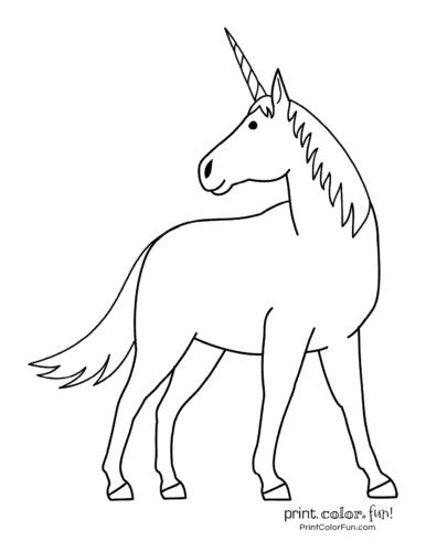 Simple unicorn design
