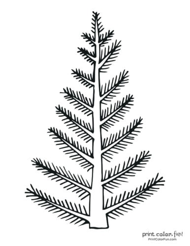 Simple natural blank Christmas tree coloring page