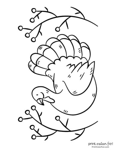 Simple turkey coloring page