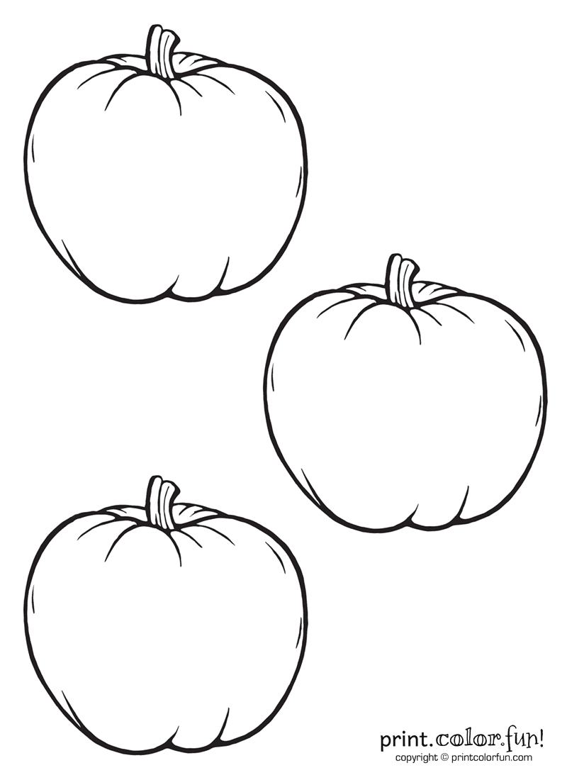 3 little pumpkins coloring page print color fun for Pumpkin coloring pages free printable