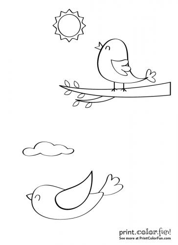 Two cute little happy birds