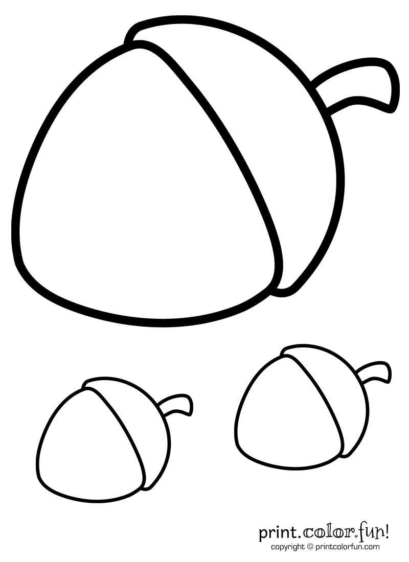 Trio of acorns coloring page Print Color Fun