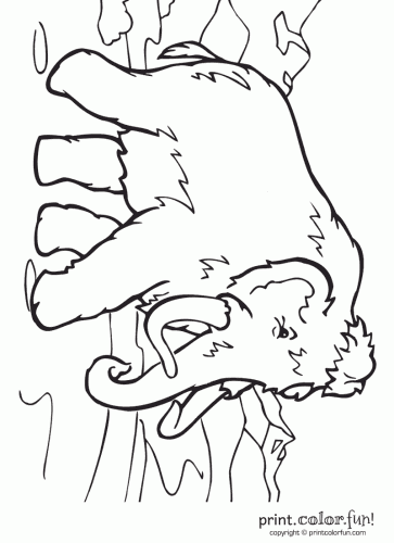 Wooly mammoth coloring page Print