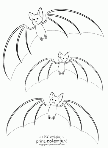 3 cute bats coloring page print color fun for Printable bat coloring pages