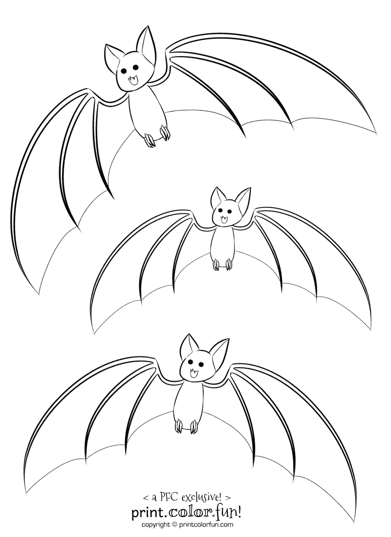 3 cute bats coloring page print color fun