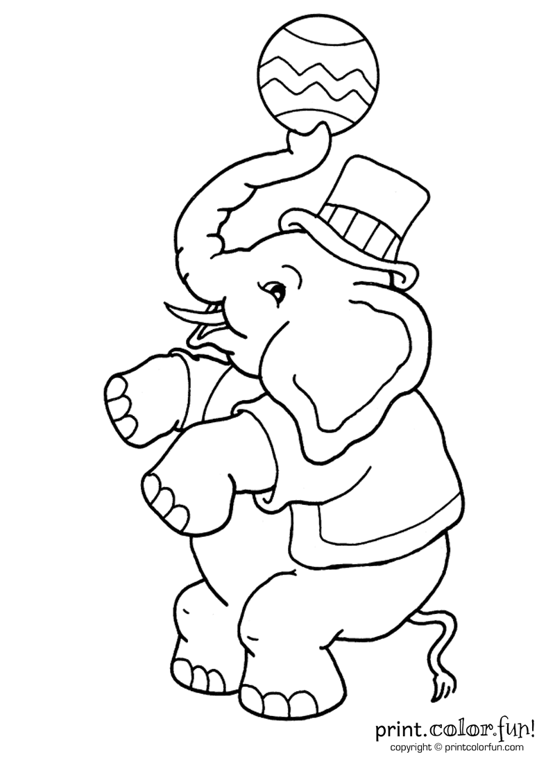 Circus Elephant Coloring Page #3