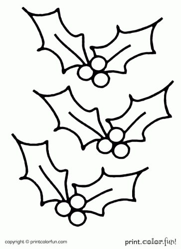 coloring page of holly leaf pages ideas christmas