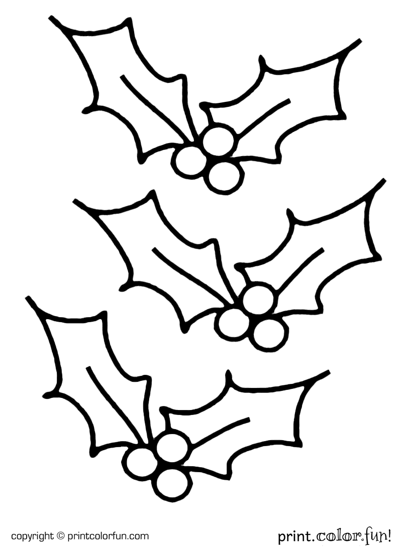 christmas holly border coloring pages - photo#4