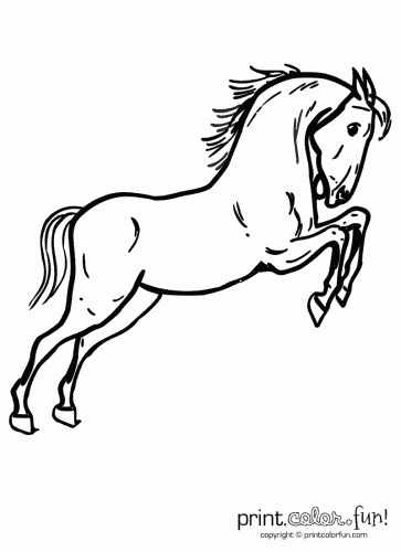 Coloring Pictures Of Horses Jumping. More coloring pages you might like Jumping horse page  Print Color Fun