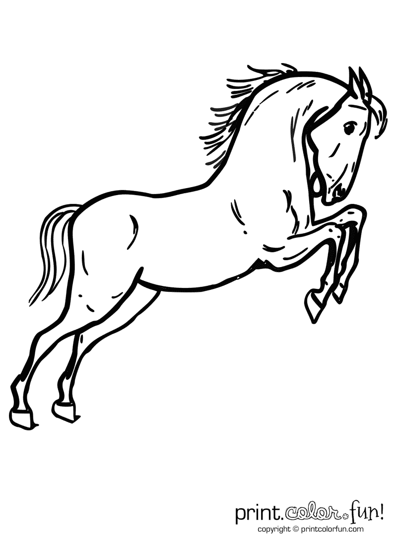 Jumping horse coloring page Print