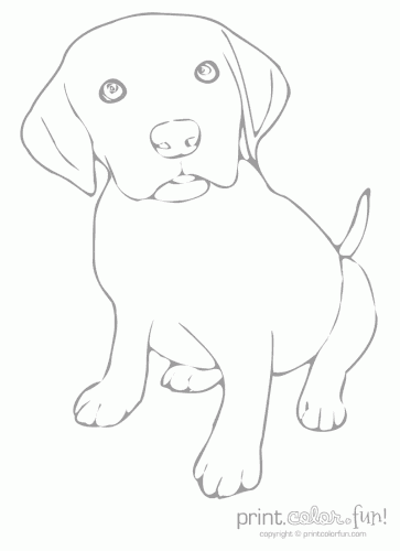 Surging Cute Puppy Coloring Page - Free Coloring Pages Online | 500x363
