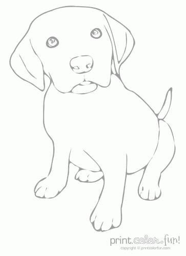 lab puppy low ink