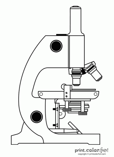 microscope coloring page