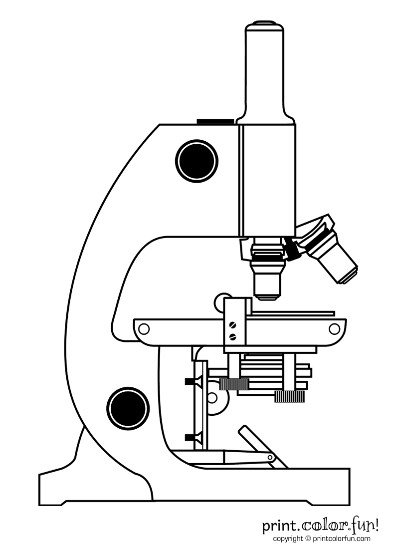 microscope coloring page print color fun