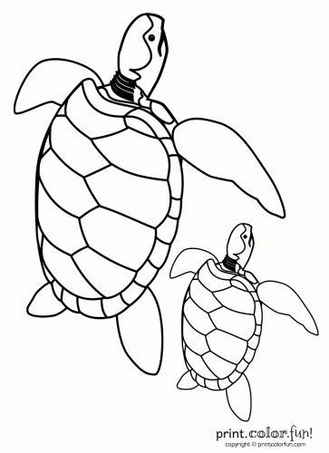 mommy turtle coloring pages - photo#3
