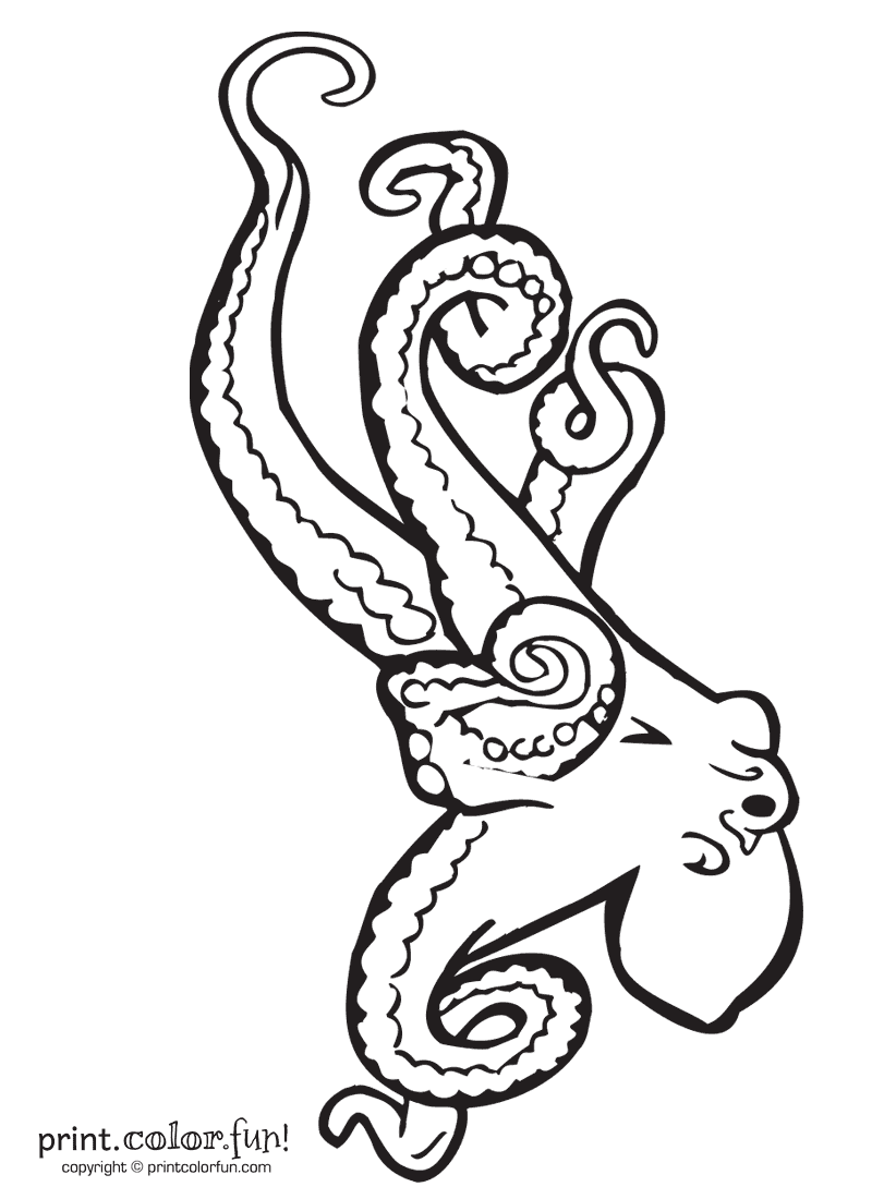 Free coloring pages of octopus stencil