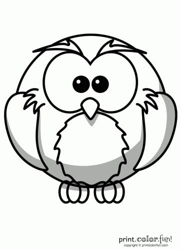 owl circles
