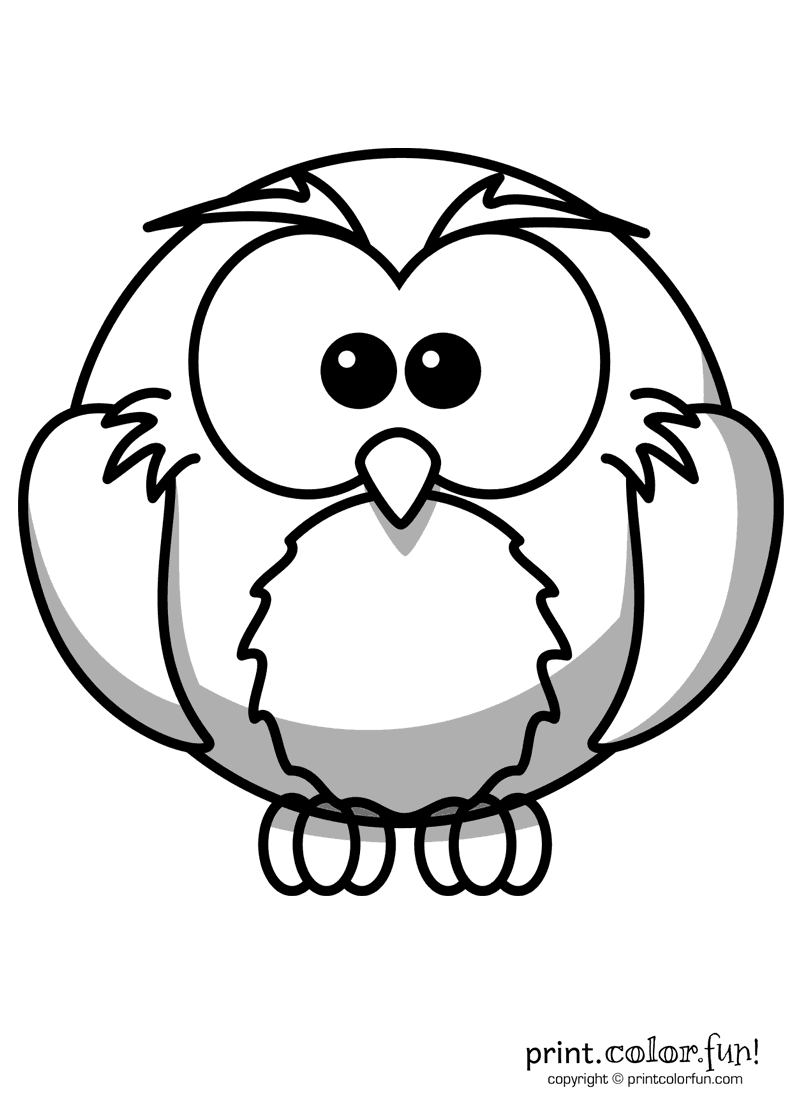 Cartoon Owl Coloring Page Print Color Fun