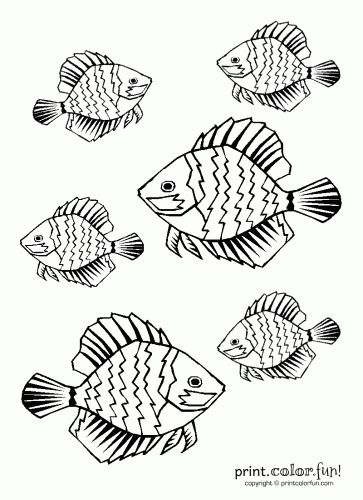 Tropical fish coloring page Print