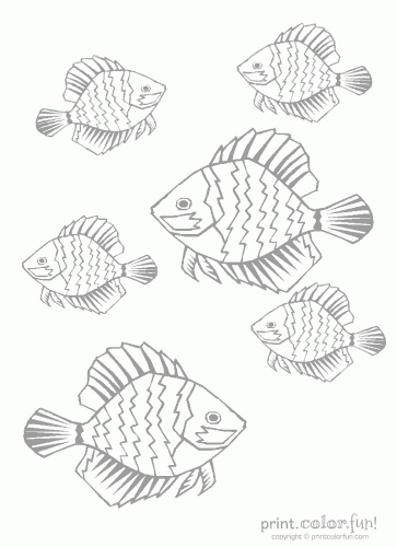 tropical fish low ink