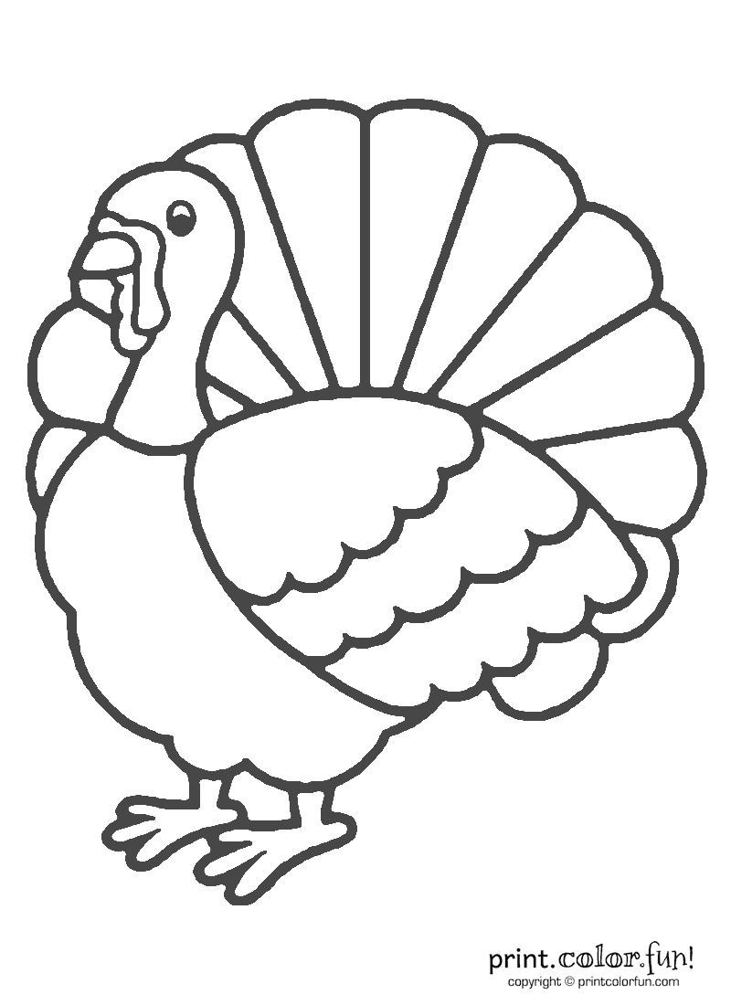 Coloring Pages Turkeys Preschool : Thanksgiving turkey coloring page print color