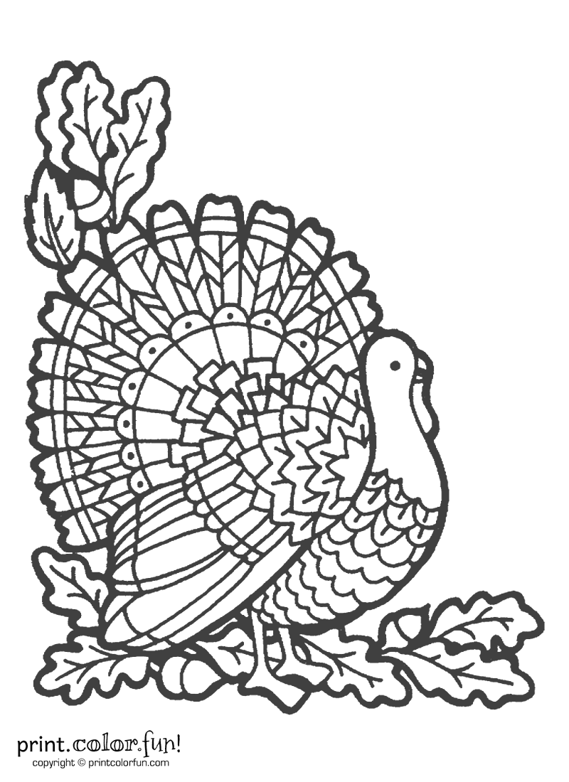 Decorative turkey coloring page